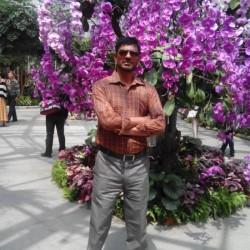 zainmalik312, Sargodha, Pakistan