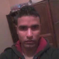 cheval003, Algeria