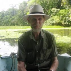 junglrbill, Belize