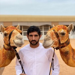 hamdanFazza, 19821114, Abu Dhabi, Abu Dhabi, United Arab Emirates